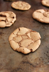 Double Chocolate Meltaway Cookies
