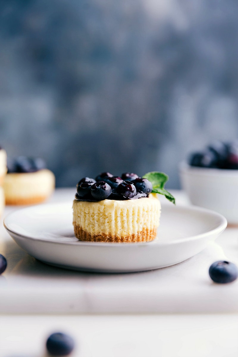 Up-close image of a Mini Blueberry Cheesecake with fresh blueberries on top.
