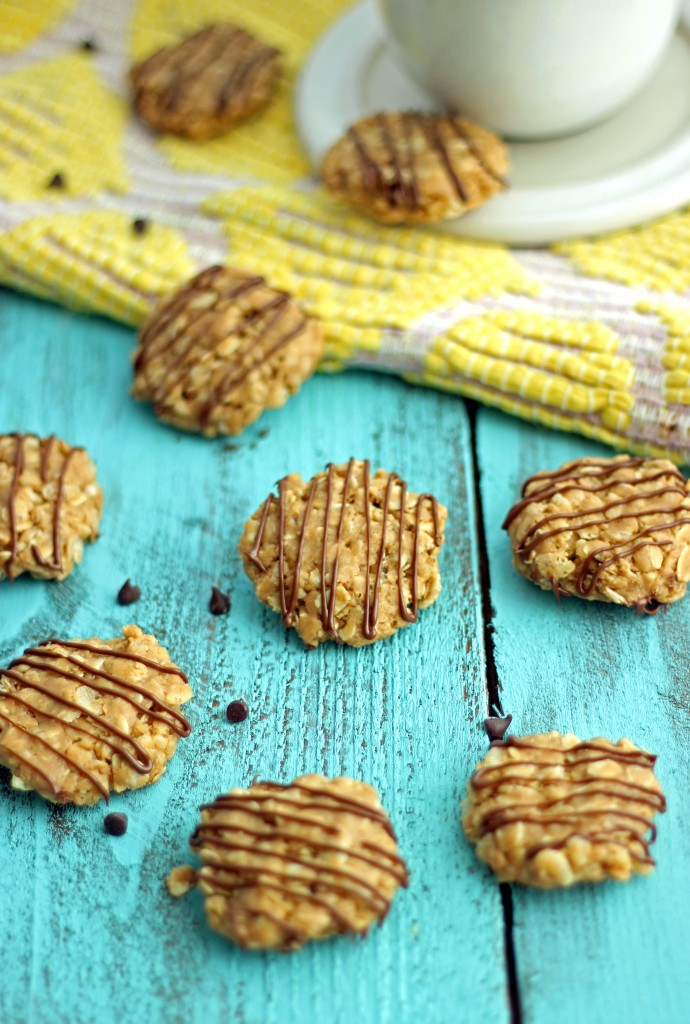 No-Bake Breakfast Cookies that are good for you!