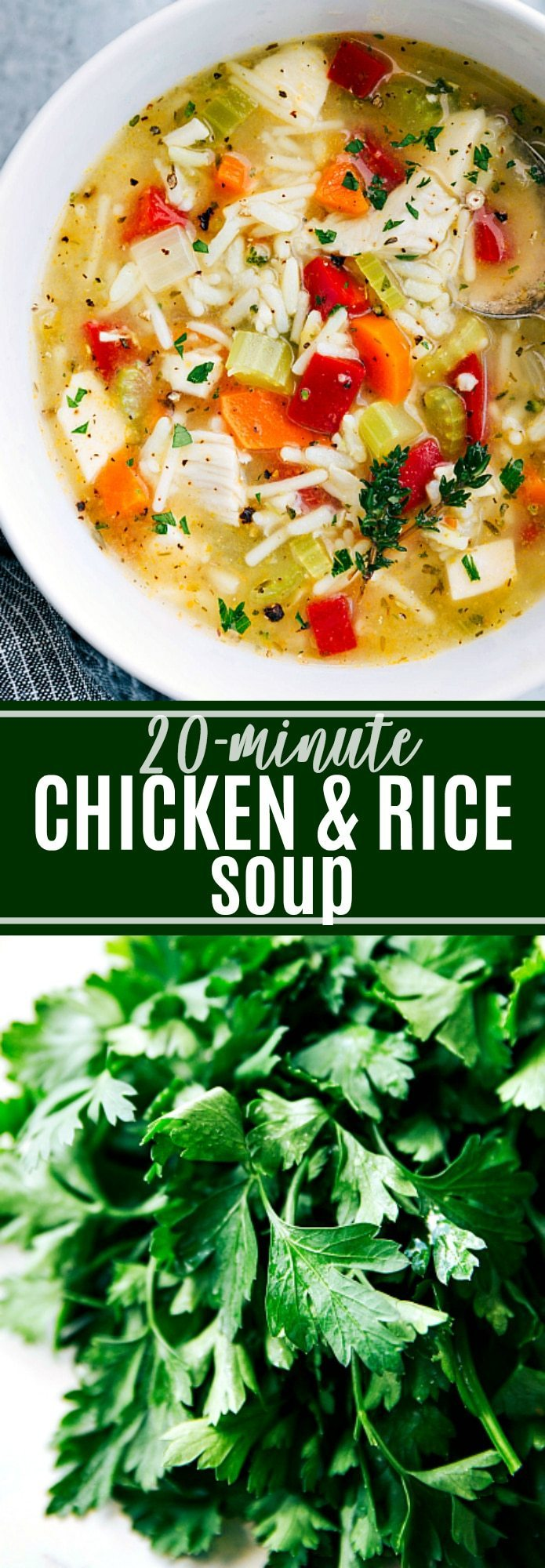 A chicken broth based soup chock-full with good for you vegetables, shredded chicken, rice, and seasonings. A hearty, healthy, and delicious soup. via chelseasmessyapron.com