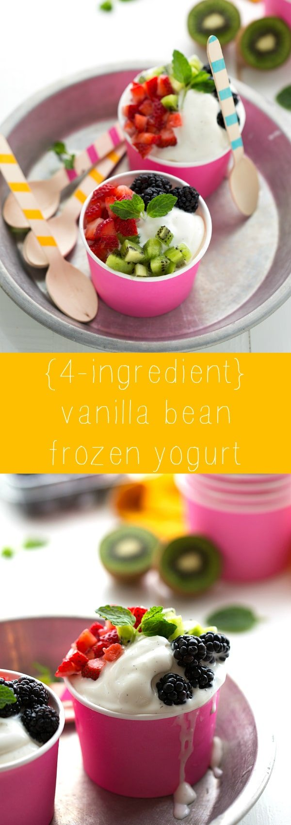 4-ingredient Vanilla Bean Frozen Yogurt