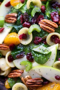A simple pasta + spinach salad with crunchy apples, celery, and toasted pecans, chewy dried cranberries, sweet mandarine oranges and coated in a delicious poppyseed vinaigrette