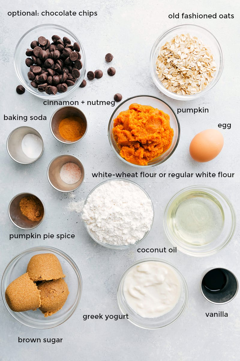 Overhead photo of all of the healthy pumpkin bread ingredients: yogurt, pumpkin, oats, coconut oil, etc.