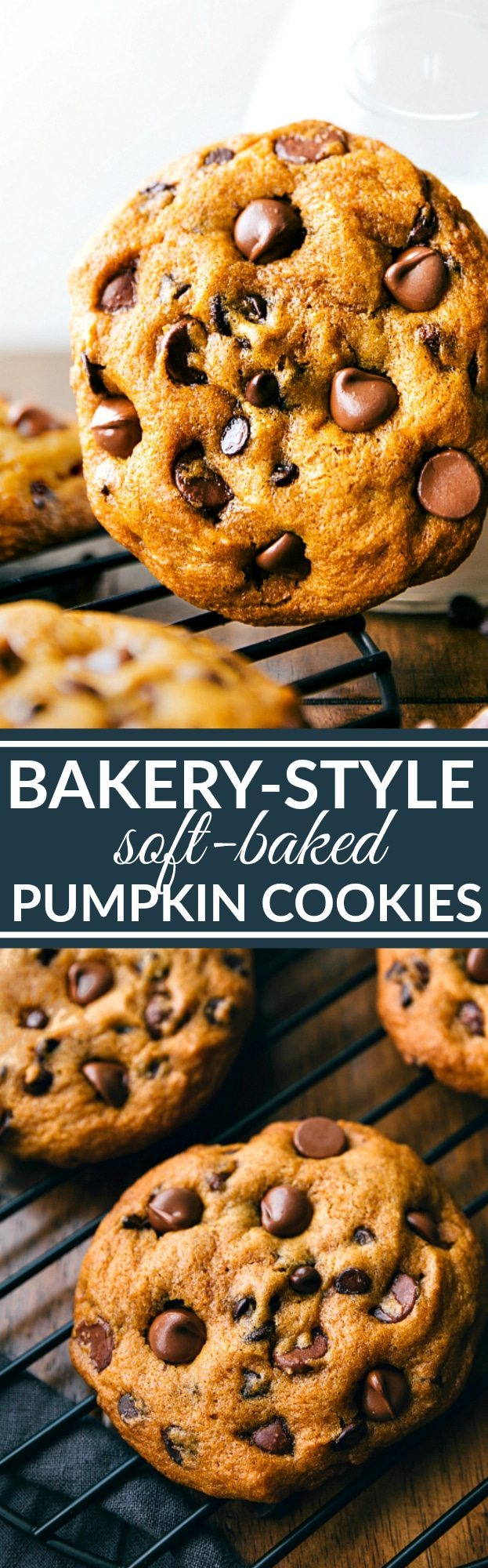Super big, chewy and soft, muffin-top like pumpkin chocolate-chip cookies that taste like they are straight from a bakery! These bakery-style pumpkin cookies are made in ONE bowl! Recipe via chelseasmessyapron.com