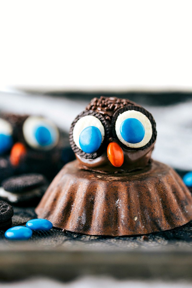 OWL OREO BALL: Four different ways to dress up an oreo ball for Halloween -- a witch, spider, frankenstein, and an owl. Easy and delicious treats that are perfect for a party! via chelseasmessyapron.com