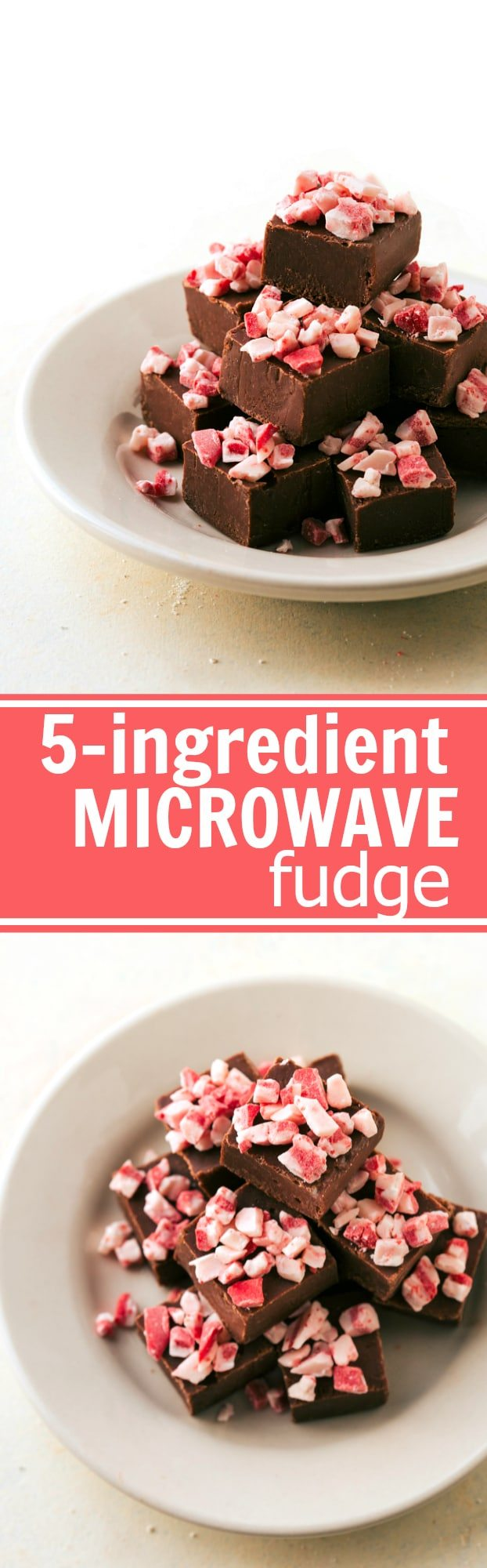 FOOLPROOF MICROWAVE FUDGE! Four different easy, quick, and fool-proof Christmas treats that the kids can help with! Perfect for gift-giving and enjoying with the family. Peppermint bark cookies, toffee cashew clusters, microwave fudge, and rudolph bites! Recipes via chelseasmessyapron.com