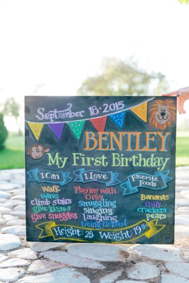 Life Lately: Bentley's First Birthday
