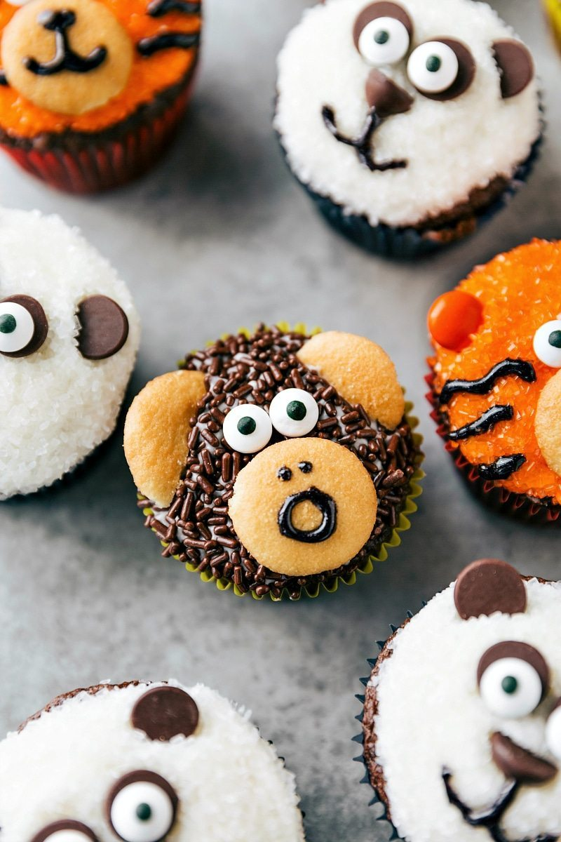 EASY JUNGLE CUPCAKES! Four simple and easy to make animal jungle cupcakes -- a zebra, monkey, tiger, and a panda; chelseasmessyapron.com