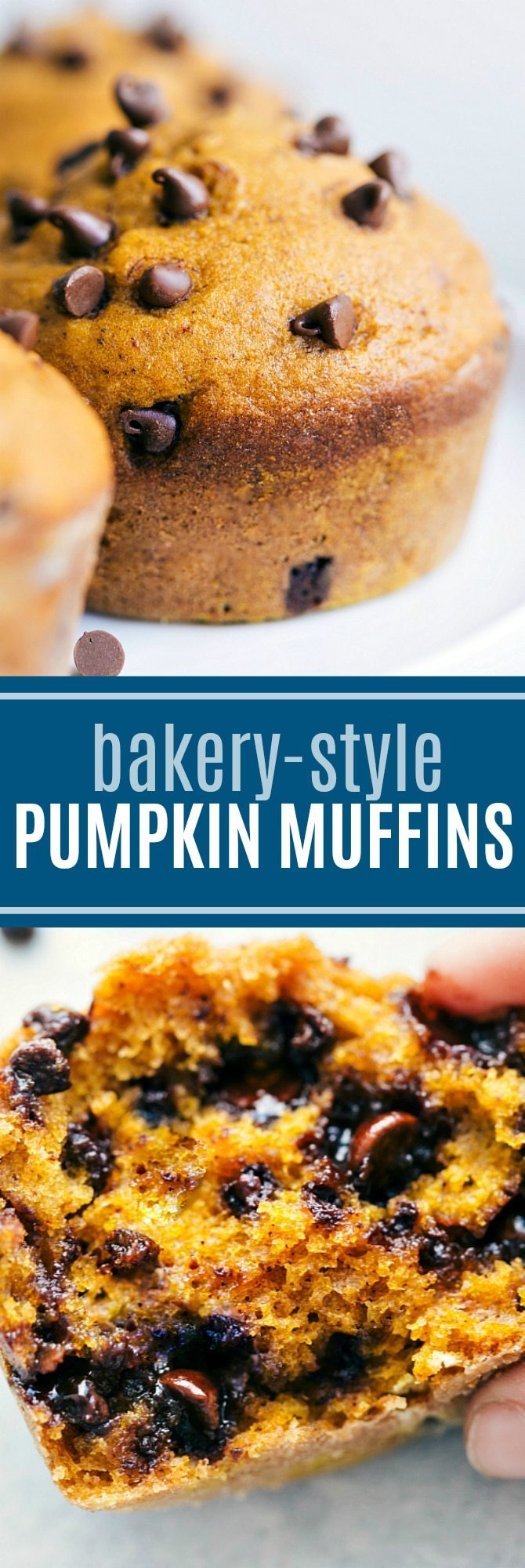 The ultimate BEST EVER bakery-style pumpkin muffins! Read the rave reviews!! via chelseasmessyapron.com