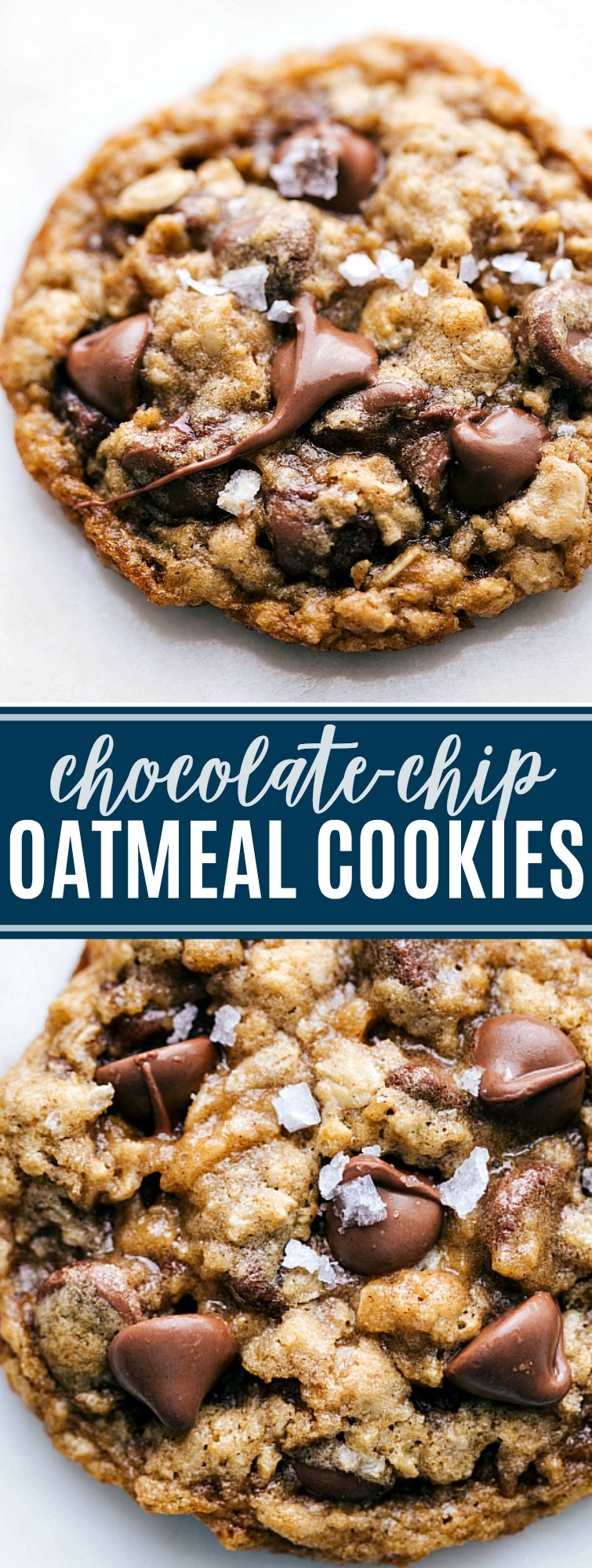 Soft, chewy, buttery, and best of all CHOCOLATEY: these oatmeal chocolate chip cookies are the absolute best! Plus tips to make these perfect everytime! via chelseasmessyapron.com #oatmeal #chocolate #chip #cookies #easy #quick #holiday #bake #baking #treat #dessert #cookie #exchange