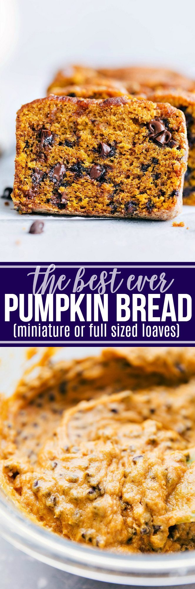 This is the best-ever, tested-to-perfection, made-from-scratch, moist pumpkin bread stuffed with mini chocolate chips (or nuts/raisins). Directions for miniature or full sized loaves of bread. The miniature loaves are great for holiday gift-giving! | chelseasmessyapron.com | #pumpkin #bread #best #ever #mini #miniature #chocolatechips #fall #baking #thanksgiving #easy #quick #kidfriendly