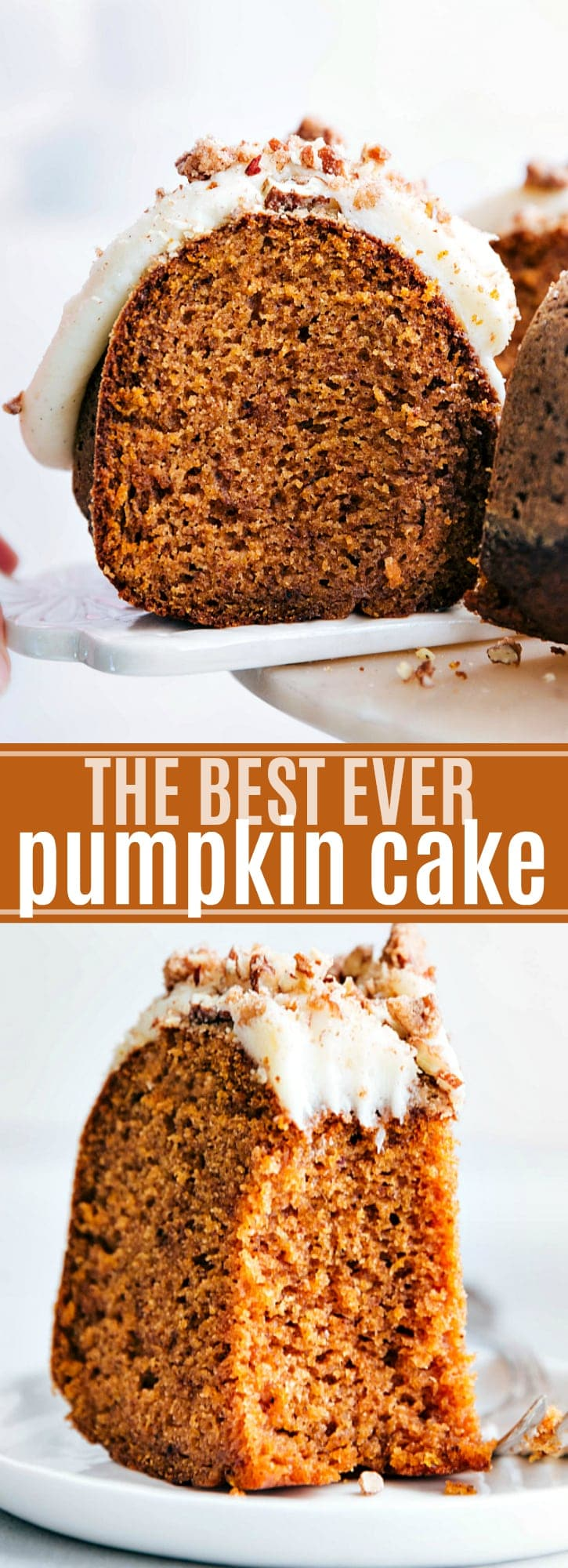 The BEST ever moist and perfectly spiced pumpkin cake with a luscious cream cheese frosting via chelseasmessyapron.com #bundt #cake #pumpkin #cream #cheese #frosting #best #ever #dessert #fall #thanksgiving #bestever #pecan #nut #easy #failproof #tested #healthy #healthier #tried #true