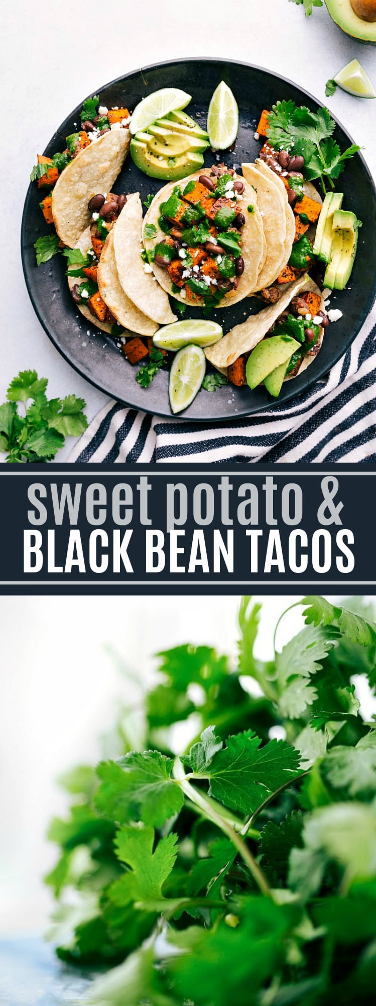 Roasted sweet potatoes and black bean tacos served with a delicious cilantro-lime sauce -- these are the BEST easy vegetarian tacos! via chelseasmessyapron.com #vegetarian #veggies #blackbean #best #easy #kidfriendly #sweet #potato #fall #food #recipe #dinner #avocado #cilantro