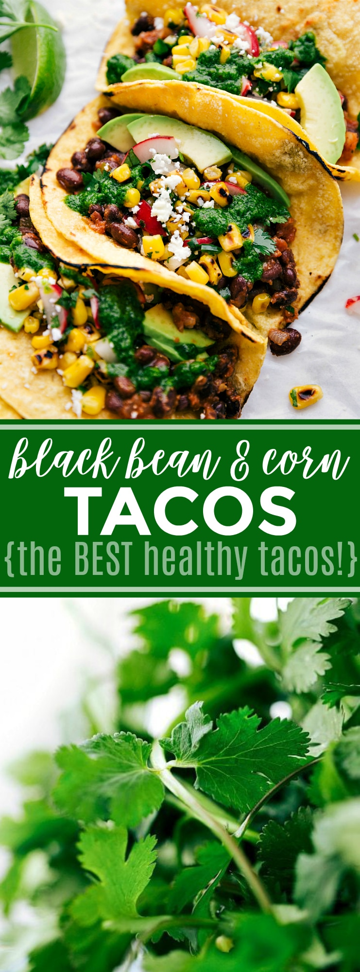 Healthy tacos made with seasoned black beans, a corn relish, fresh avocado, and a delicious cilantro pesto; Made with wholesome, good-for-you ingredients, these are the BEST healthy tacos ever! These tacos are vegetarian, but trust me, you won't be missing the meat! via chelseasmessyapron.com #taco #corn #black #bean #vegetarian #veggie #healthy #easy #quick #tacos #cilantro #avocado