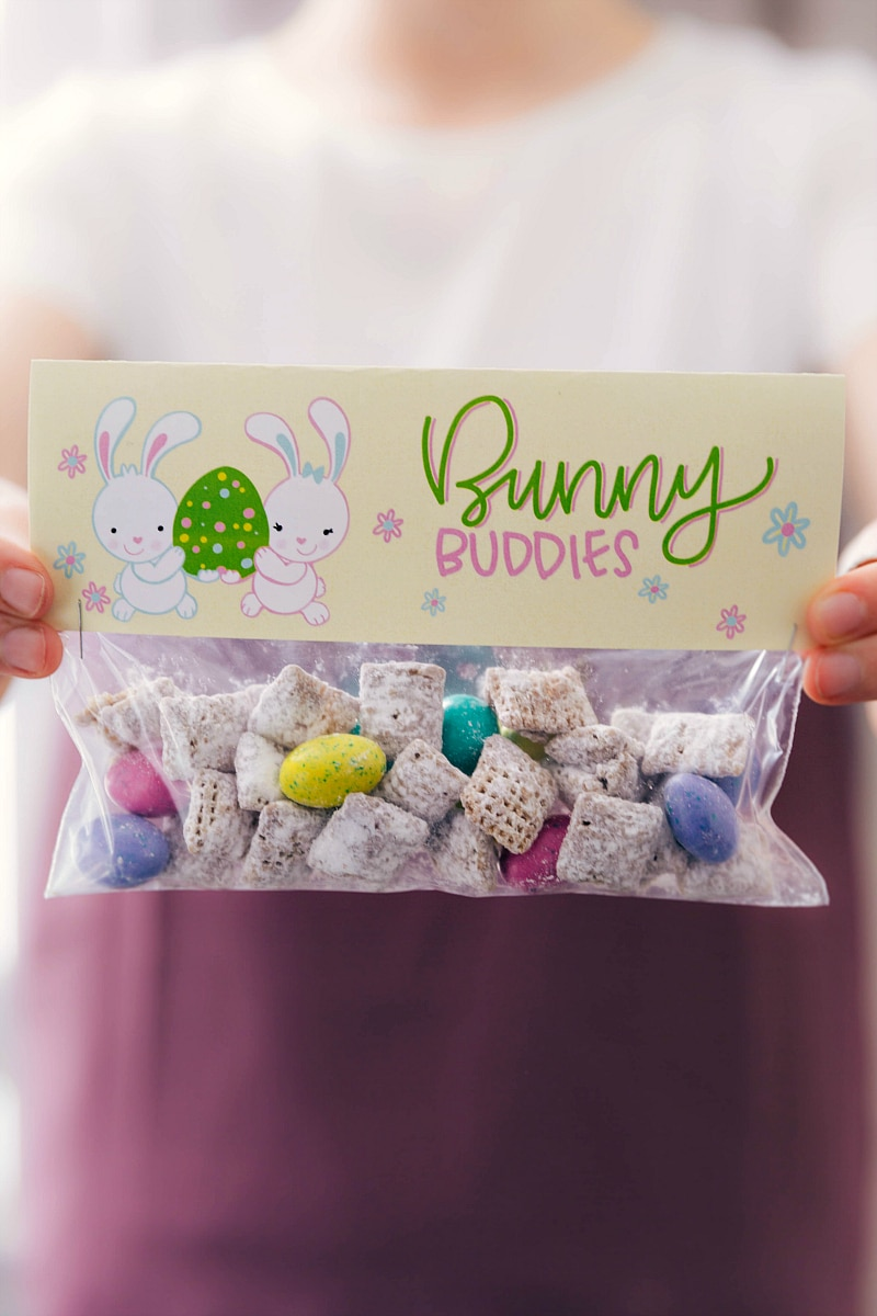 Bunny Buddies bag topper