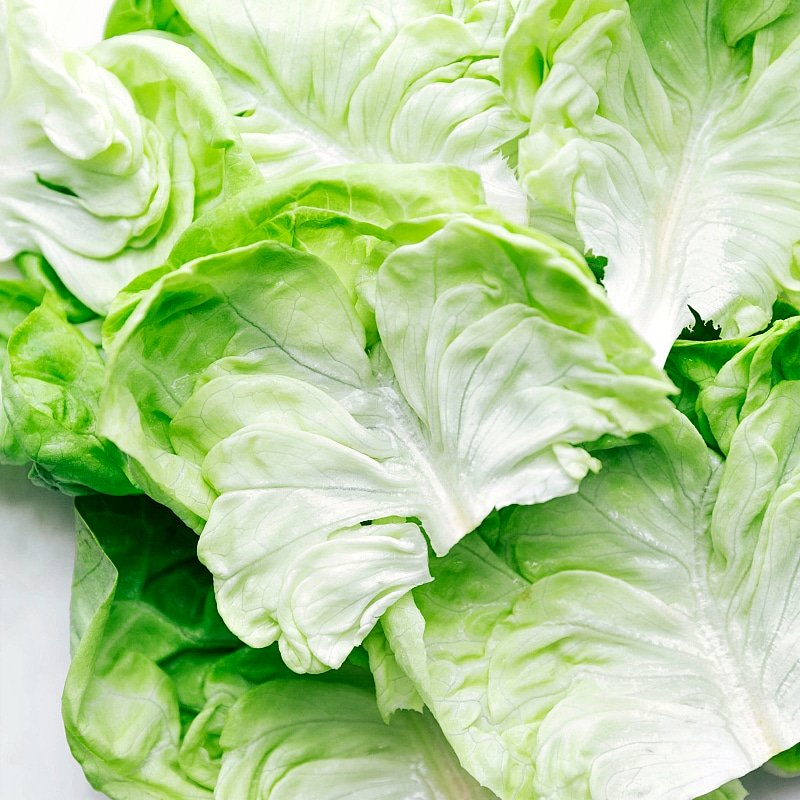 Image of the lettuce leaves used in this recipe.