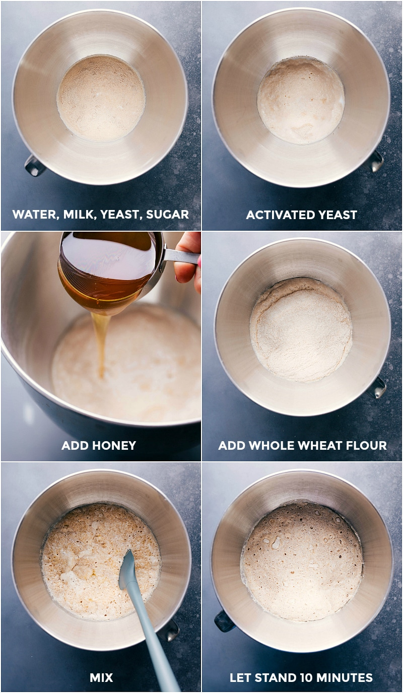 Process shots-- images of the water, milk yeast, and sugar being added; the yeast being activated; honey being added; flour being added; and everything being mixed together; and left to stand for 10 minutes.