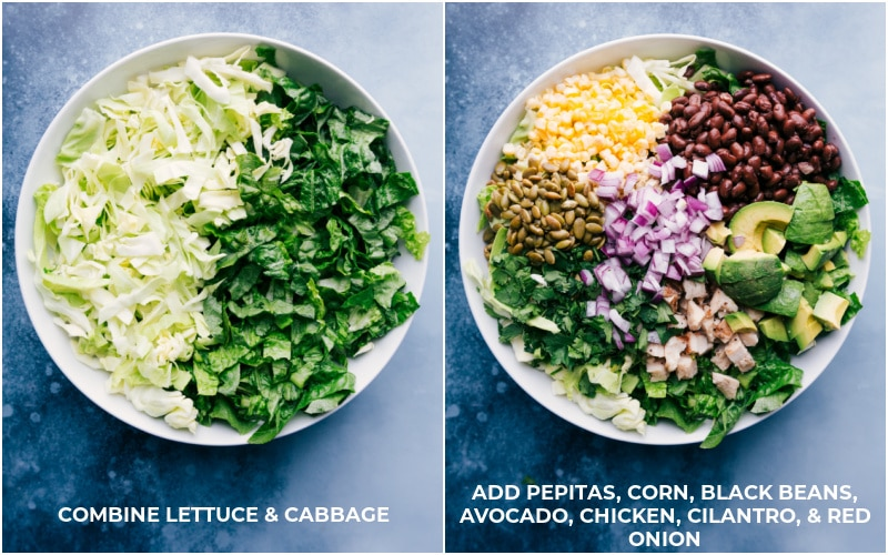 Chipotle Chicken Salad: start with lettuce and cabbage; add pepitas, corn, black beans, avocado, chicken, cilantro and red onion.