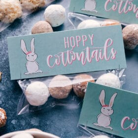 Hoppy Cottontails! (Free Easter Printable)