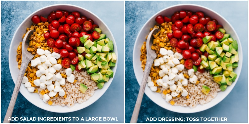 Process shots: Add salad ingredients to a large bowl and toss with the dressing.